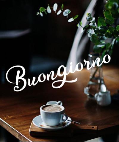 Buongiorno Caffè Serendipity