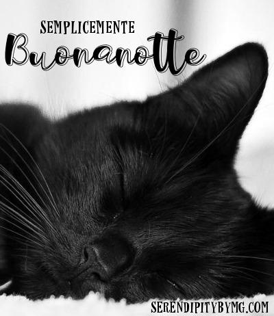 Buonanotte Nuove Immagini Gatti Serendipity